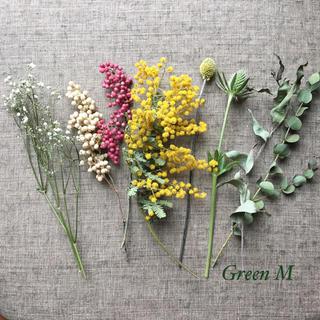 春色ミモザドライフラワーのボタニカルセット✳︎送料無料 商品24(ドライフラワー)