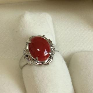 Pt900 高知産 赤珊瑚11x8.7mmデザイン リング 約13号(リング(指輪))