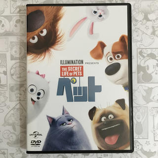 新品未使用   ペット   DVD&純正ケース