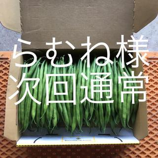 鹿児島産サヤインゲン  1キロ^_^次回通常(野菜)