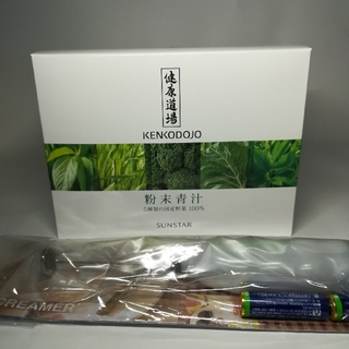 サンスター(SUNSTAR)の【送料無料】サンスター 粉末青汁 電動ミニクリーマー付(青汁/ケール加工食品)