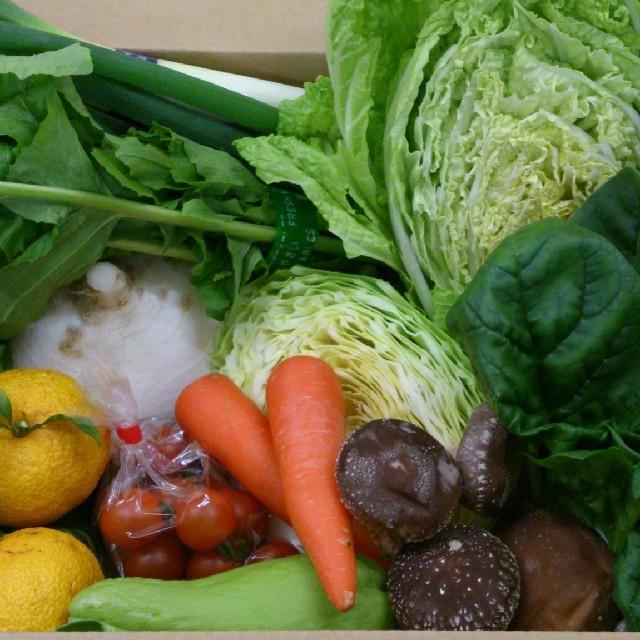 ☆まころん様 専用ページ☆ 食品/飲料/酒の食品(野菜)の商品写真