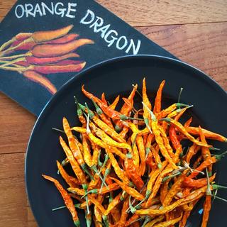 唐辛子☆オレンジドラゴン☆20g(野菜)