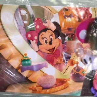 ディズニー(Disney)の新作❤️新品☆ディズニー  イマジニング  フォト(アート/写真)