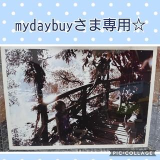 矢沢あい☆直筆サイン入り版画?☆シリアルナンバー入り(その他)