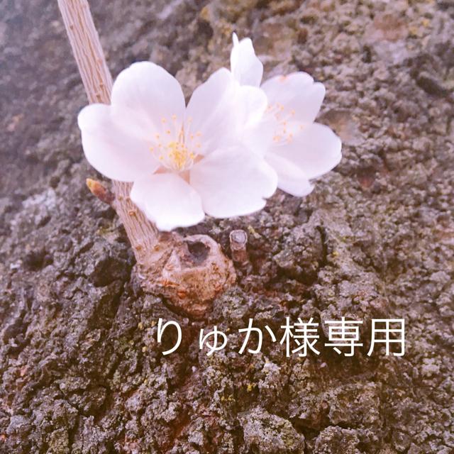 naturaglace(ナチュラグラッセ)の❀naturaglace❀オーガニック❀メイクアップベース コスメ/美容のベースメイク/化粧品(その他)の商品写真