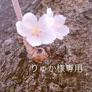 ナチュラグラッセ(naturaglace)の❀naturaglace❀オーガニック❀メイクアップベース(その他)