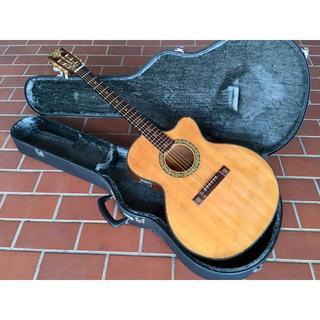 アリアカンパニー(AriaCompany)の国内未発売モデル!上位機!ARIA サンドパイパー デラックス  アリア (アコースティックギター)