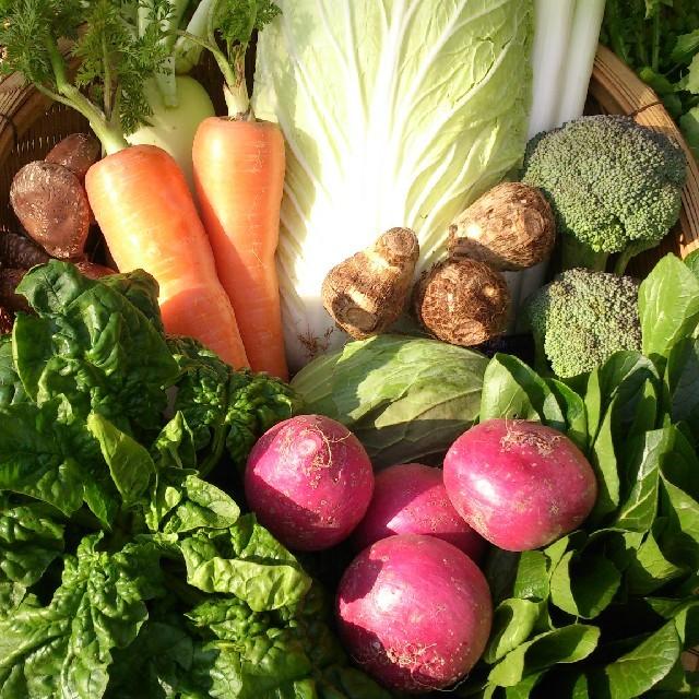 ☆こじ様専用ページ 100サイズお野菜セット☆ 食品/飲料/酒の食品(野菜)の商品写真