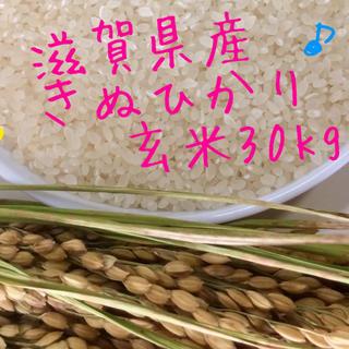 きぬひかり  滋賀県産  29年産  玄米30kg(米/穀物)