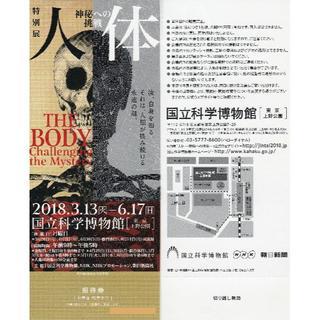 特別展 「人体 神秘への挑戦」 招待券(通期券)(美術館/博物館)
