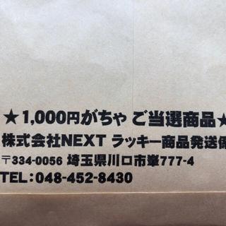 ニンテンドー3DS(ニンテンドー3DS)のhisa様専用(家庭用ゲームソフト)