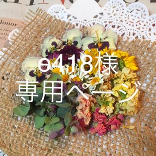 春の花ヘッドドライフラワー(ドライフラワー)
