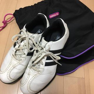 アディダス(adidas)のシューズバッグつき★ adidas ゴルフシューズ 23.5cm(シューズ)