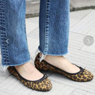 スピックアンドスパン(Spick and Span)のスピックアンドスパン レオパード 靴 新品(その他)