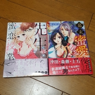 じゅりりん様専用☆お値下げ!TL2冊セット(女性漫画)