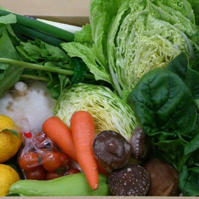 ☆まろ太様 専用ページ☆ 食品/飲料/酒の食品(野菜)の商品写真