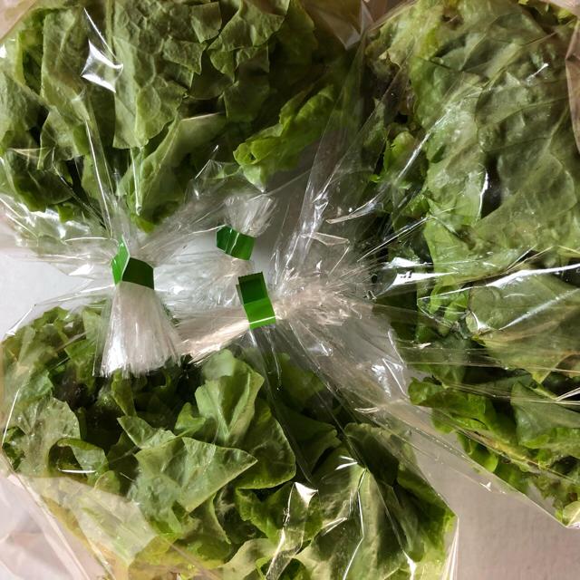 おまかせ野菜セット M 食品/飲料/酒の食品(野菜)の商品写真