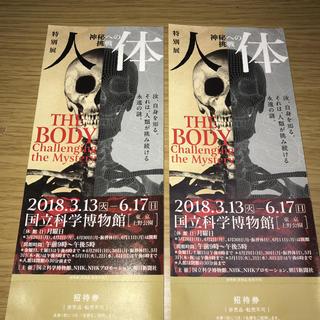 人体 神秘への挑戦 招待券 ペア(美術館/博物館)