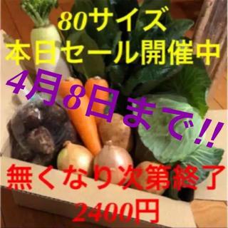新鮮野菜詰め合わせ 値下げも明日まで!!ぜひこの機会にお試しください(野菜)