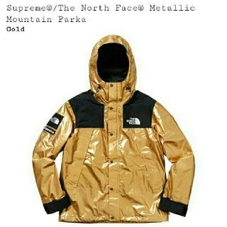 シュプリーム(Supreme)のsupreme north face マウンテンパーカー L(マウンテンパーカー)
