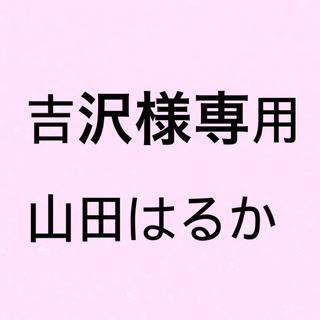 吉沢様専用(その他)