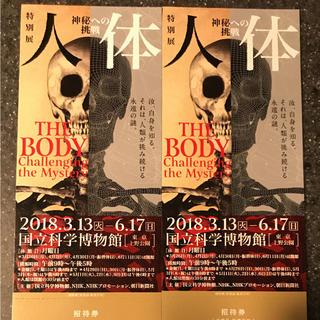 二枚 人体 チケット(美術館/博物館)