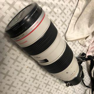 キヤノン(Canon)のcanon ef 70−200mm f 2.8(レンズ(ズーム))