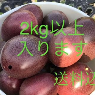 パッションフルーツ  送料込み  2kg以上入ります❣️(フルーツ)