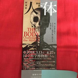 人体展 チケット(美術館/博物館)