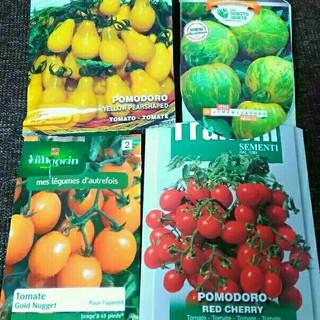 3月~4月蒔き イタリア野菜の種子など。カラフルなトマトの種 4種類10粒ずつ(野菜)