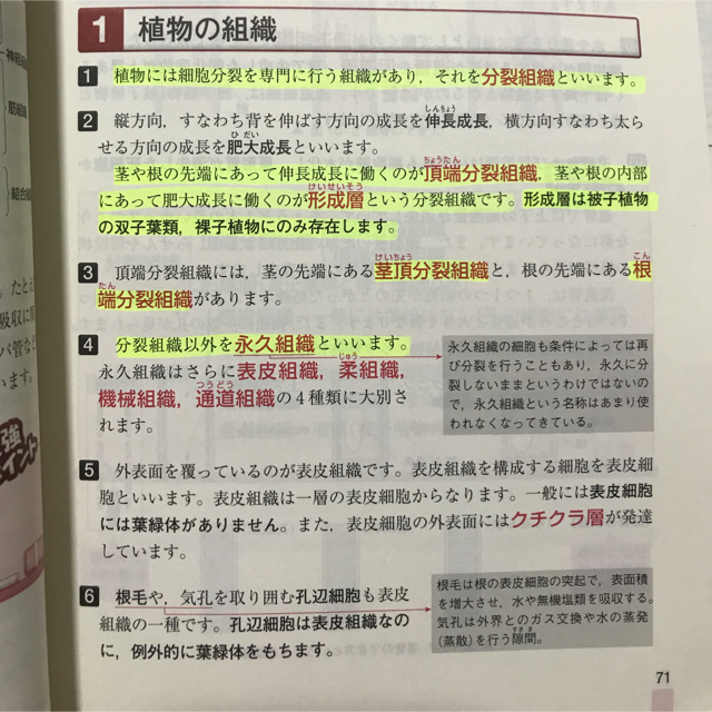 大森徹の最強講義(りんごさん専...