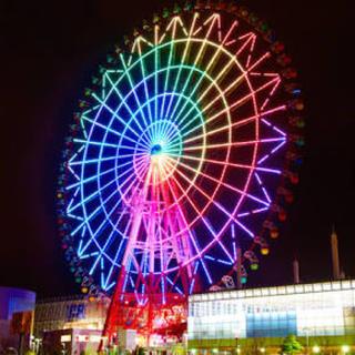 東京 お台場 大観覧車 ペア チケット 2枚セット(遊園地/テーマパーク)