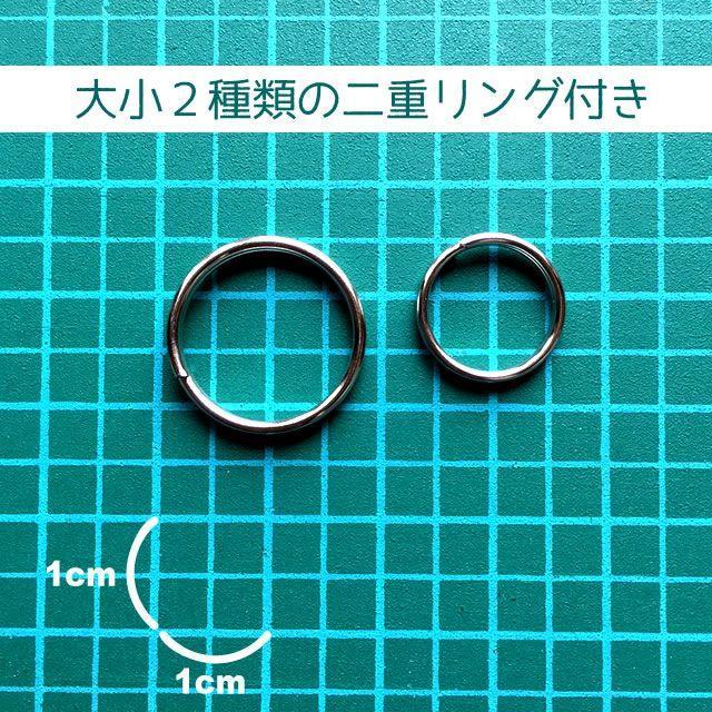犬 ペット 迷子札(オレンジ)M その他のペット用品(犬)の商品写真