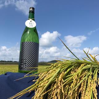 山廃純米吟醸 龍湖【りゅうこ】 1800ml (日本酒)