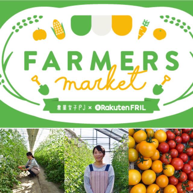 中玉トマト1キロ 食品/飲料/酒の食品(野菜)の商品写真