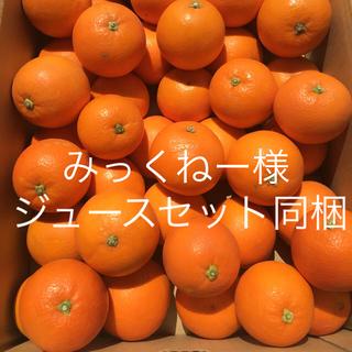ブラッドオレンジ5キロ箱入(フルーツ)