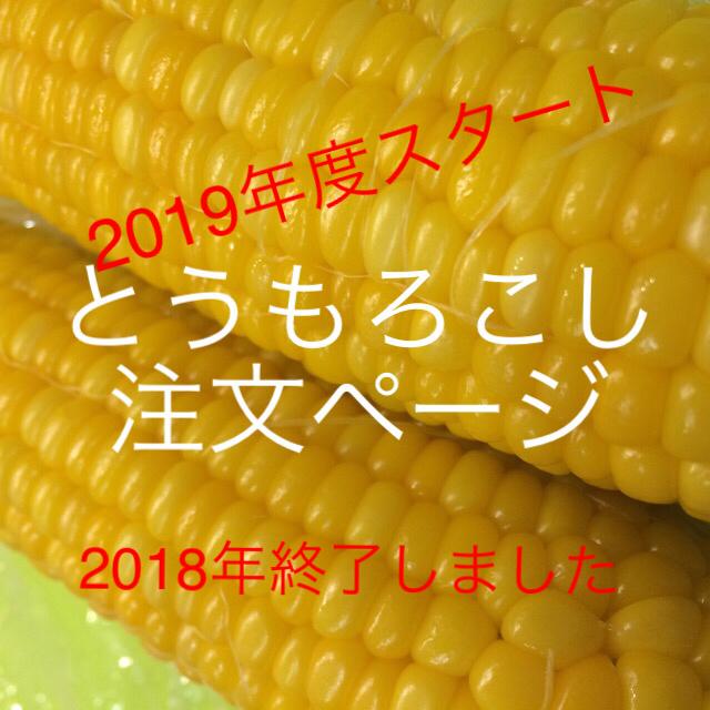 準備中 食品/飲料/酒の食品(野菜)の商品写真