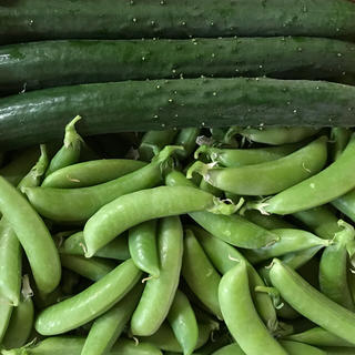 キュウリ3本&スナップエンドウ500g(野菜)