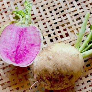 成田産 お野菜詰め合わせ10品80サイズ(栽培期間中無農薬、無化学肥料)(野菜)