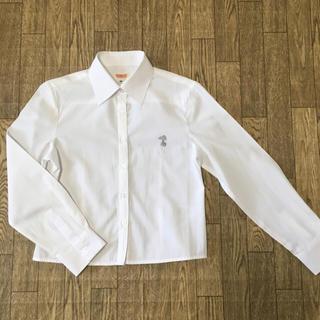 シマムラ(しまむら)のスクールシャツ 白シャツ 女の子 140(ブラウス)