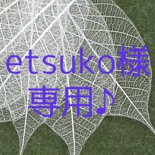 etsuko様 専用ページです♪(ドライフラワー)