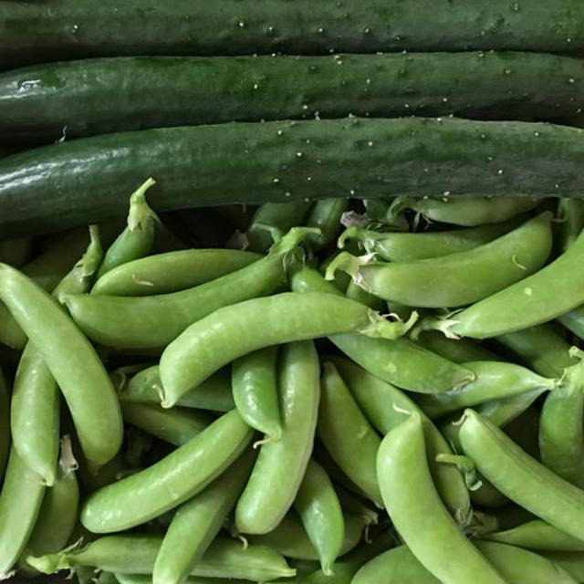 キュウリ3本とスナップエンドウ500g 食品/飲料/酒の食品(野菜)の商品写真