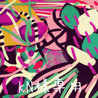 KN様専用ページ(ピアス)