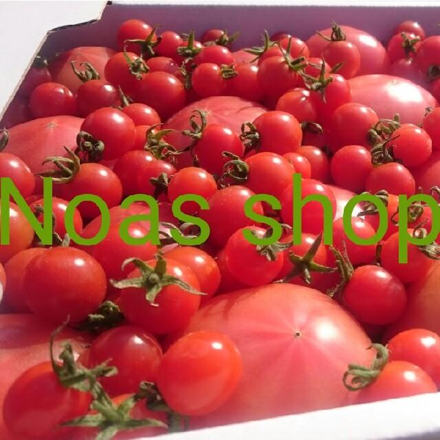 専用ページです 食品/飲料/酒の食品(野菜)の商品写真