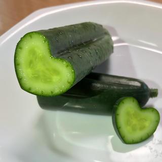 ハートキュウリセット(野菜)