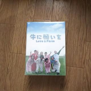 らいちょん様専用 牛に願いをLove&Farm DVD-BOX 初回限定版(TVドラマ)
