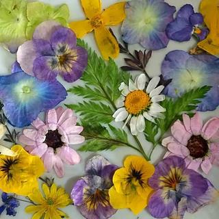 押し花 花材 素材 加工用 アジサイ ビオラ etc 25枚(各種パーツ)