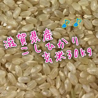 滋賀こしひかり玄米30kg29年産(米/穀物)