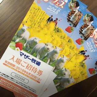 マザー牧場無料券3枚(その他)